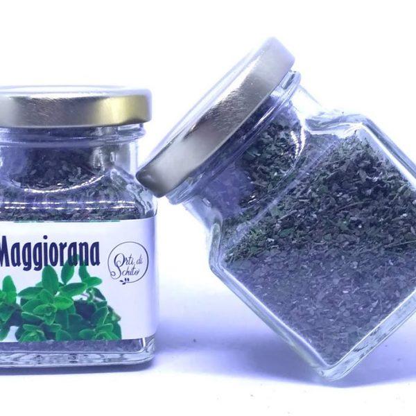 Maggiorana 01 600x600 1