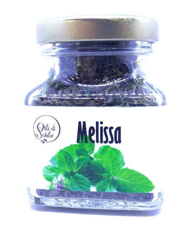 Melissa 600x726 1