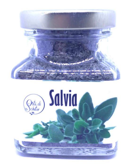 Salvia 00